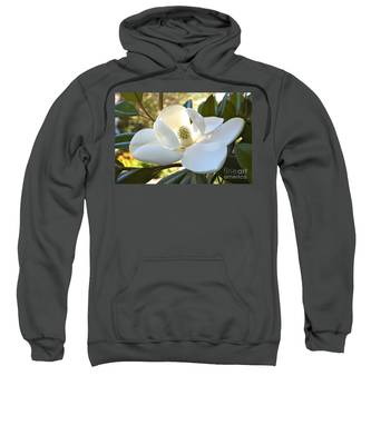 Sunlit Southern Magnolia Sweatshirt