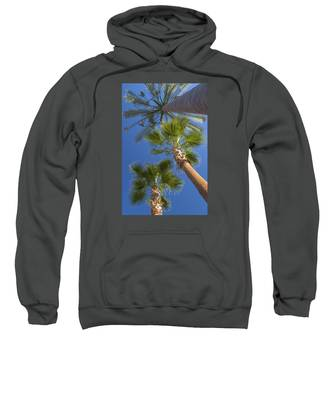 Which One Doesnt Belong 1 Sweatshirt