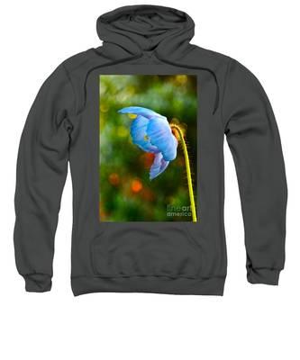 Blue Poppy Dreams Sweatshirt