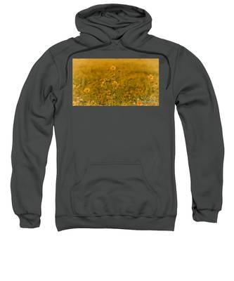 Daisy's Sweatshirt