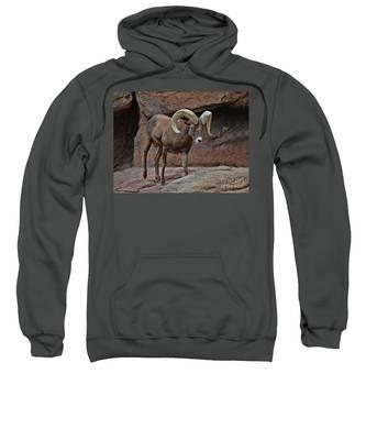 Desert Bighorn Sheep Ram I Sweatshirt