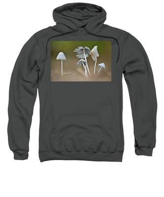Ink-cap Mushrooms Sweatshirt