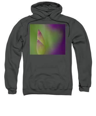 Iris-istible 1 Sweatshirt