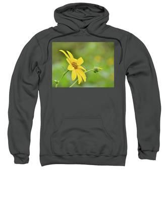 Jerusalem Gold Sweatshirt
