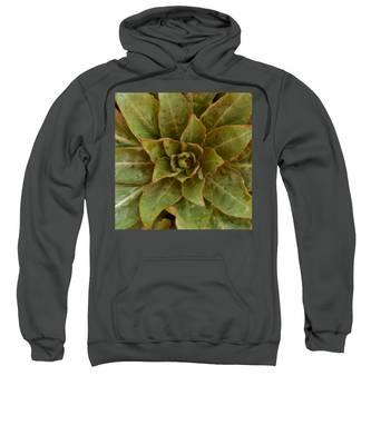 Leaf Star Sweatshirt
