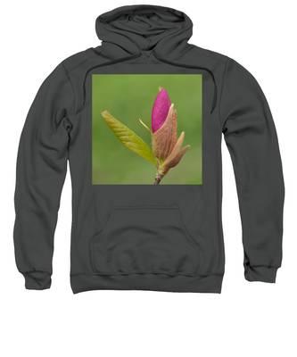 The Unvieling Sweatshirt