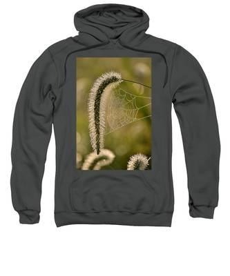 Webbed Tail Sweatshirt