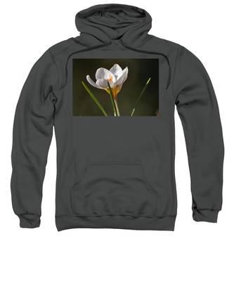 White Crocus Sweatshirt
