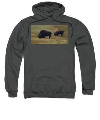 Wyoming Buffalo Sweatshirt