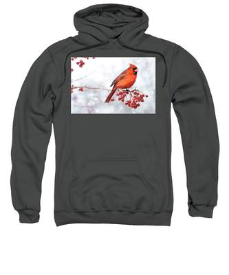 Winter Birds Sweatshirt by Jill Wellington