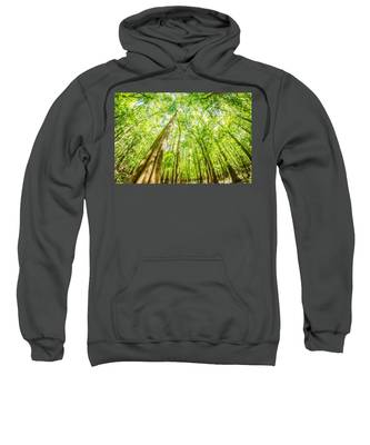cypress forest and swamp of Congaree National Park in South Caro Sweatshirt