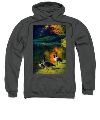 A Place In The Sun Sweatshirt