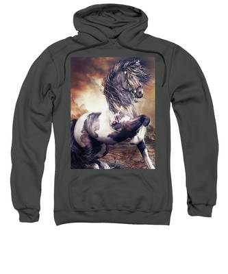 Apache War Horse Sweatshirt