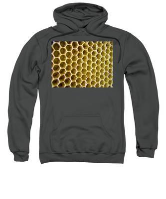 Bee's Home Sweatshirt