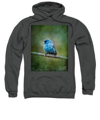 Bird In Blue Indigo Bunting Ginkelmier Inspired Sweatshirt