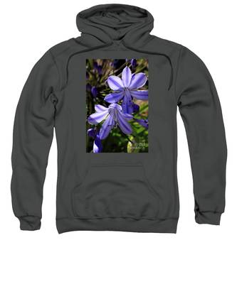 Blue Lily Sweatshirt
