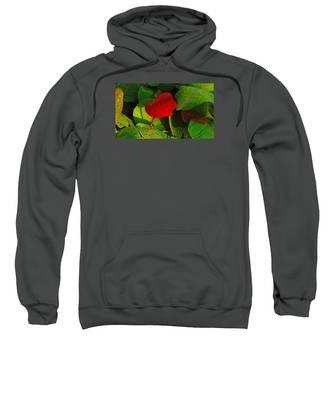 Bold Red Sea Grape Leaf Sweatshirt