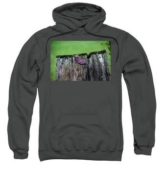 Brock's Leaf Sweatshirt