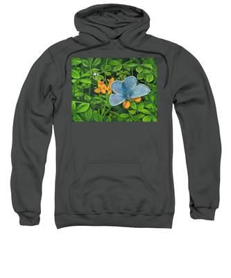 Common Blue On Bird's-foot Trefoil Sweatshirt