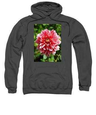 Dahlia 3 Sweatshirt