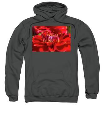 Dahlia Study 1 Painterly Sweatshirt