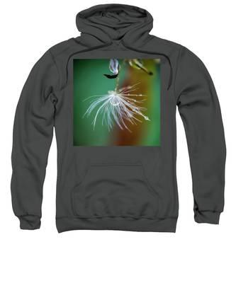 Dandelion Water Drop Macro 2 Sweatshirt