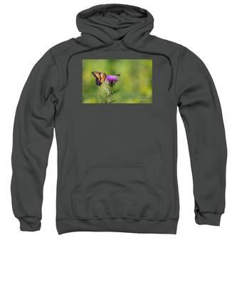 Eastern Tiger Swallowtail Sweatshirt