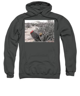 Sweatshirt featuring the photograph Ebullience by Judy Kennedy