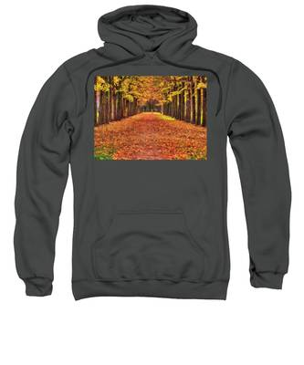 Fall Colors Avenue Sweatshirt