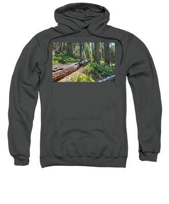 Fallen Tree- Sweatshirt
