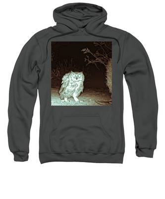 Great Horned Owl At Night In The Desert Sweatshirt by Judy Kennedy
