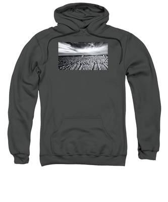Gulls On Beach Sweatshirt