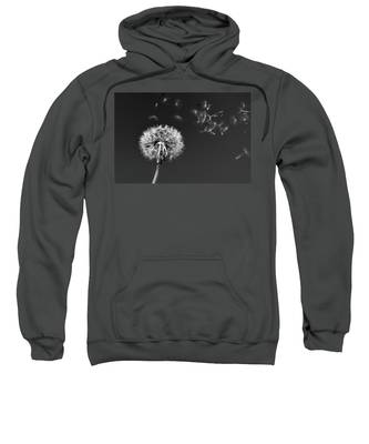 I Wish I May I Wish I Might Love You Sweatshirt