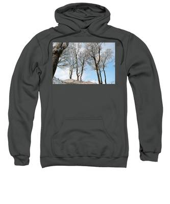 Icy Trees Sweatshirt