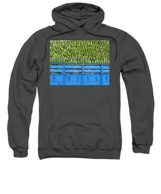 Indian Harvest Sweatshirt