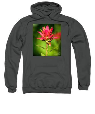 Indian Paintbrush Sweatshirt