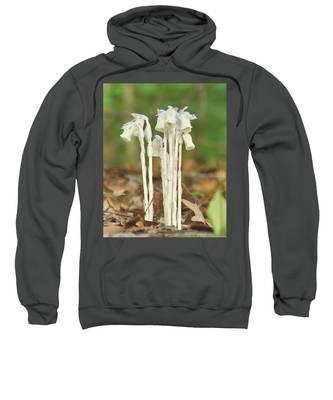 Indian Pipes Sweatshirt