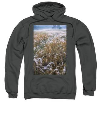 Kans Grass In Mist Sweatshirt