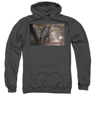 Misty Morning, Bharatpur, 2005 Sweatshirt