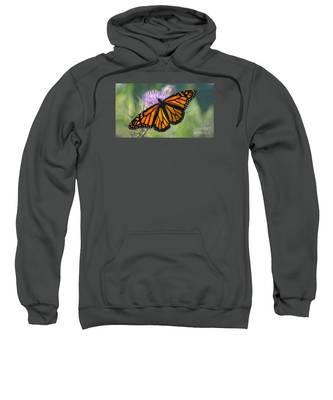 Monarch's Beauty Sweatshirt