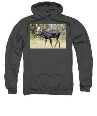 Moose On The Move Sweatshirt
