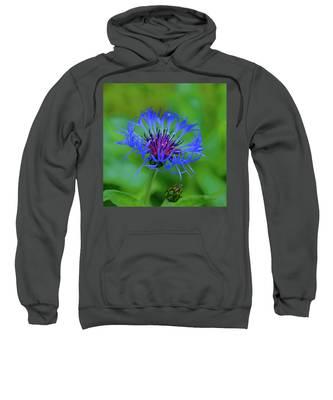 Mountain Cornflower Sweatshirt