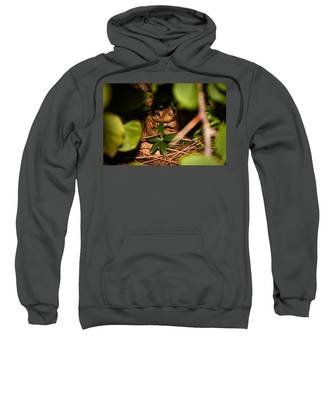 Mr Frog Sweatshirt