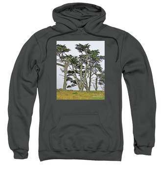 Pierce Pt. Study Sweatshirt