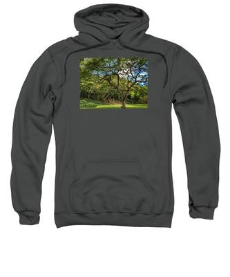 Relaxing Under The Tree Sweatshirt