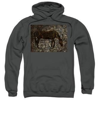 Roan Stallion Sweatshirt