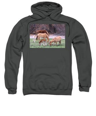 Sweatshirt featuring the photograph Salt River Wild Horses In Winter by Judy Kennedy