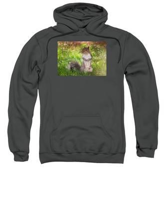 Say Cheese Sweatshirt