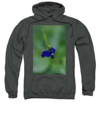 Somewhere In This Dream Sweatshirt