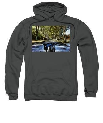Street Cows Sweatshirt